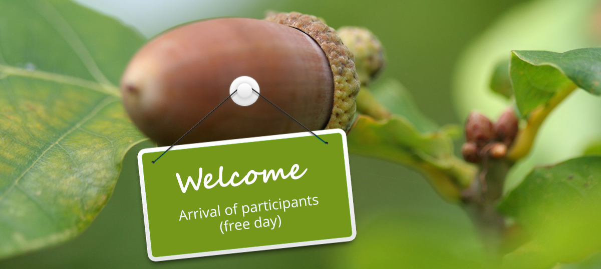 welcome - Arrival of participants